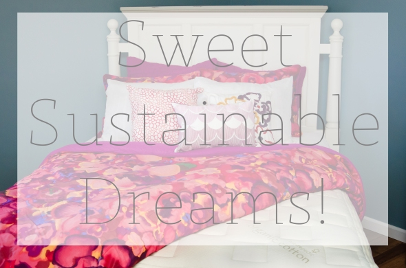 Sweet Sustainable Dreams