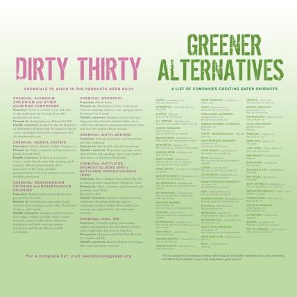 ingredients vs alternatives