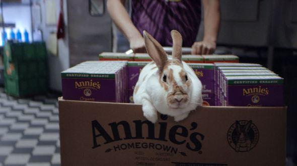 annies-bunny-box